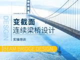 大跨径变截面连续梁桥设计实操