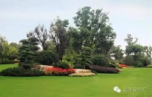 一个会种树的设计师,住宅每平方溢价3000元_43