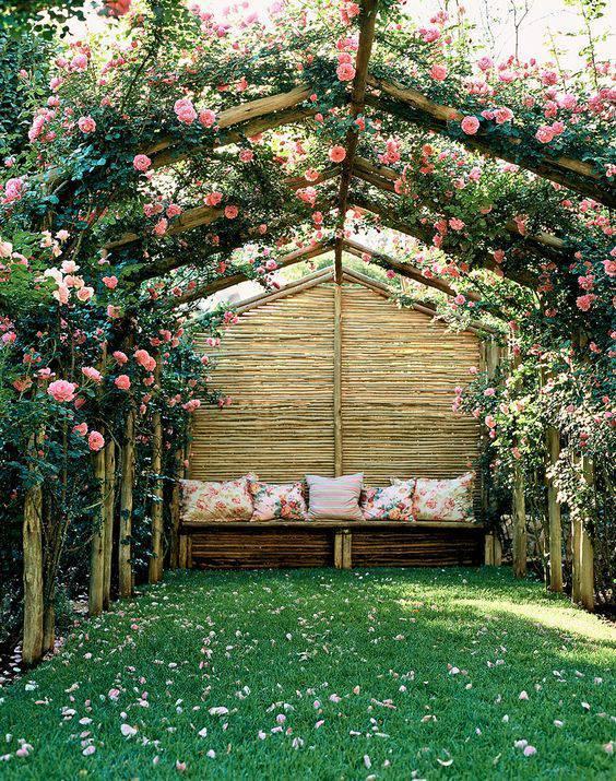 想要一个小院子,花开花落一辈子_34