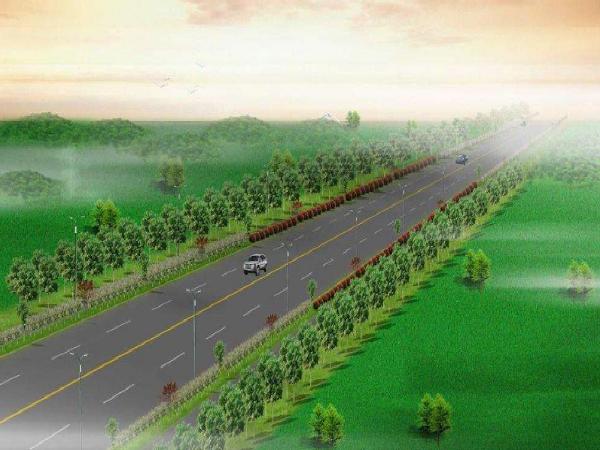 道路立交段改造项目绿化工程施工方案(word,51页)