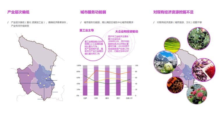 [青海]西宁多吧新城概念规划和总体城市设计(高原地貌)-[青海]西宁多吧知名地产概念规划和总体城市设计.A-2产业基础