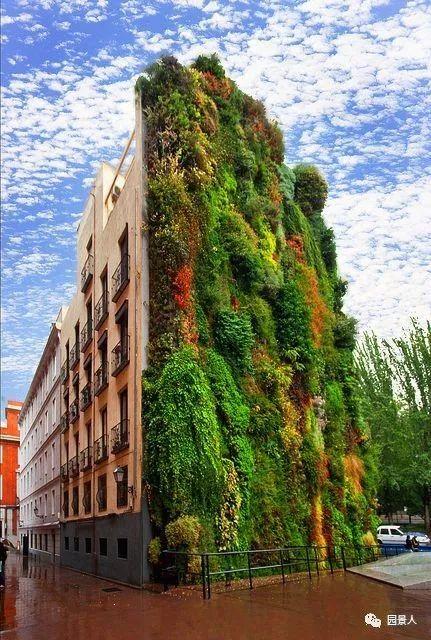 垂直绿化·会呼吸的墙壁_36