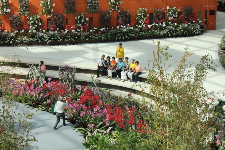 新加坡世界级超级温室花园-8