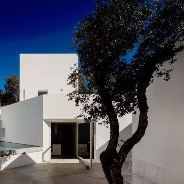 PedroDomingos丨葡萄牙极简主义乡村别墅
