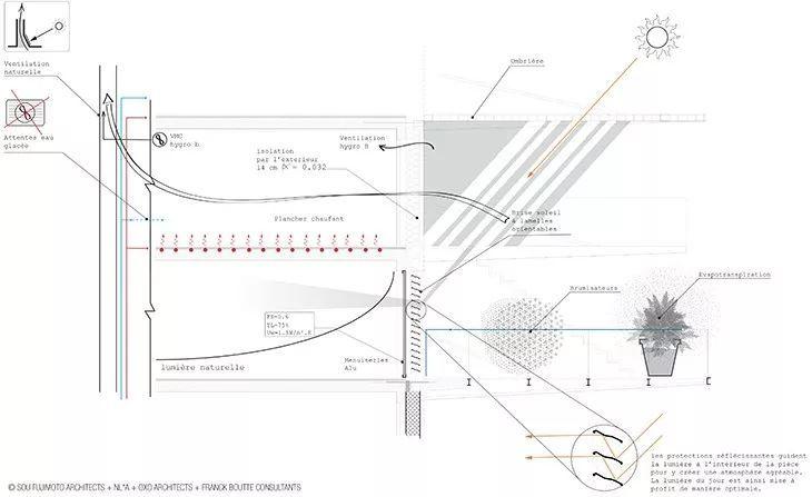"""藤本壮介设计的像树一样的公寓楼建成了,每户都有""""空中花园""""_20"""