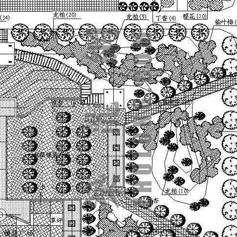 某小区绿化环境设计施工图PART 3