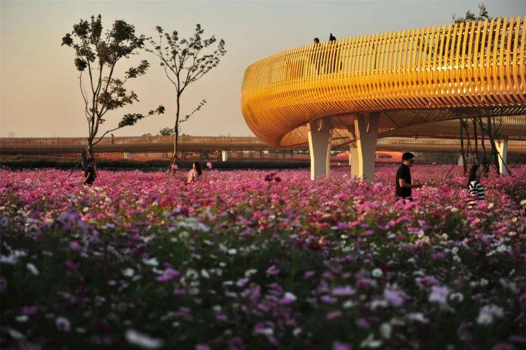 中国建筑设计奖公布,八大景观项目获得中国建筑界最高荣誉!_12