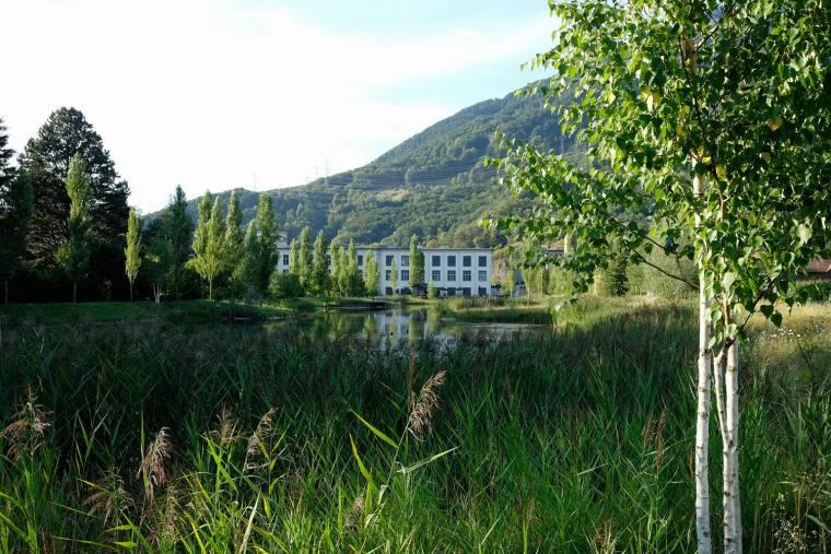 瑞士LowerFactoryPond水系环境修复-9