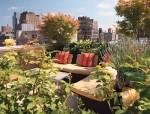 楼顶花园设计 ,看完好想拥有一个啊!