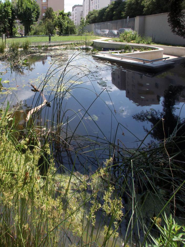 住宅区中的私人花园景观实景图 (7)