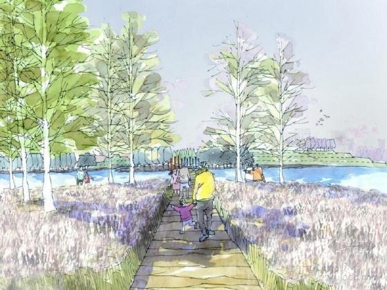 山东城市滨海开放空间概念规划设计-图8