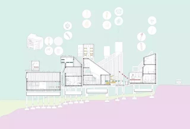 能拿下甲方的建筑分析图都是这么画出来的?