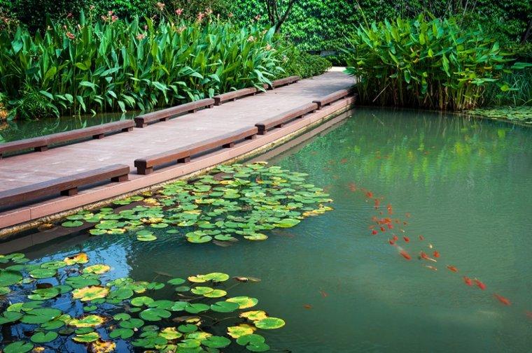 上海凯德莲公馆景观实景图 (3)