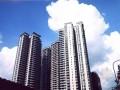 高层商住楼旋挖钻孔灌注桩工程施工组织设计(鲁班奖)