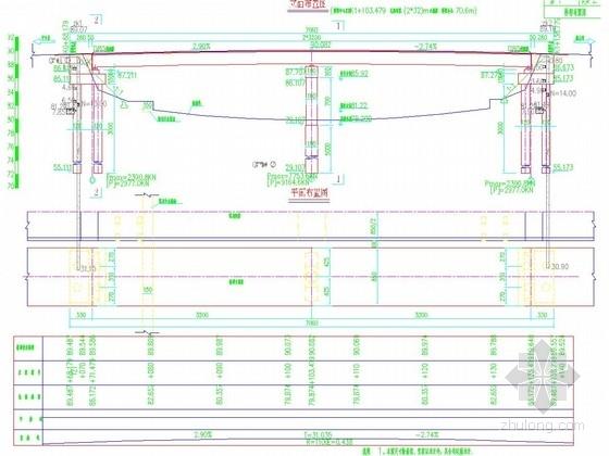 新建桥型布置图