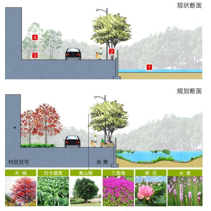 [广东]美丽乡村示范点某镇村庄详细规划景观方案设计PDF(313页)-现状断面