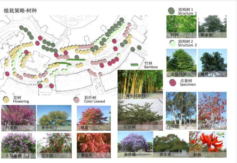 [重庆]某春森彼岸居住区景观方案设计文本.pdf(58页)_9