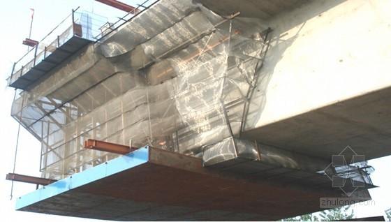[江苏]含挂篮悬浇梁支架现浇梁各种软基26km双线铁路实施性施工组织设计428页