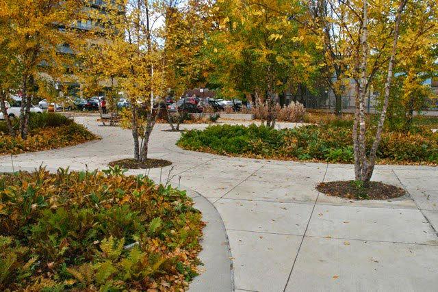 加拿大多伦多JoelWeeks公园景观设计_8