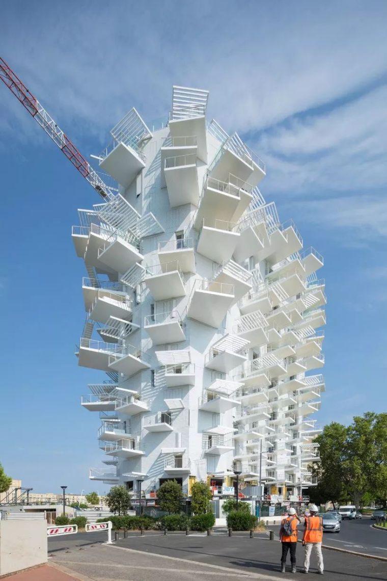 """藤本壮介设计的像树一样的公寓楼建成了,每户都有""""空中花园""""_1"""