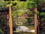 大美中国 竹篱小院