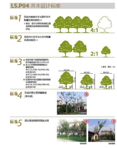 大型地产公司景观植物绿化绿皮书-5乔木设计标准