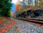 为什么普通铁路铁轨上都会铺石子而高铁铁轨不用?