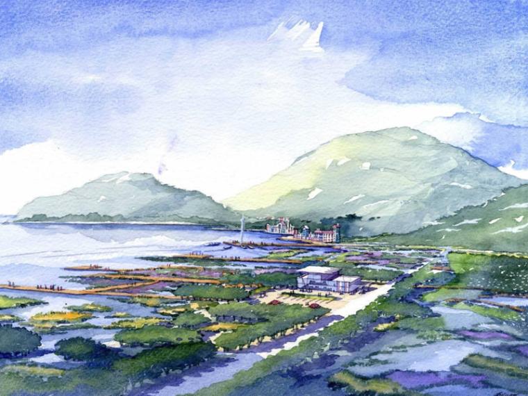 [深圳]东部海滨地区海岸带概念规划设计(生态,湿地)