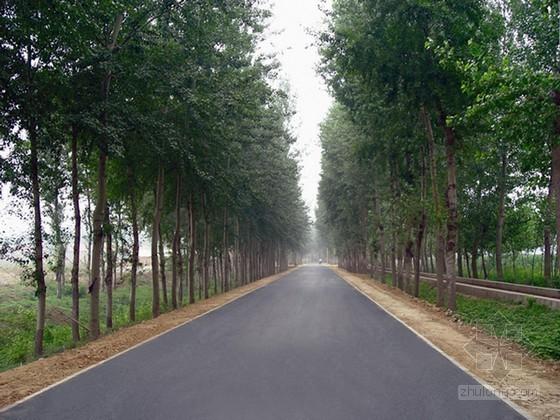 [毕业设计]四级公路道路工程施工组织设计
