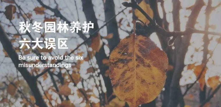 园林植物冬防,这六大误区千万要当心!_1