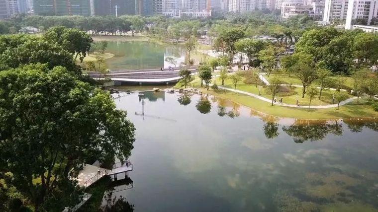海绵城市:让您在城市里遇到大自然!_4