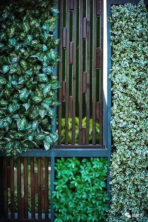 垂直绿化·会呼吸的墙壁_21