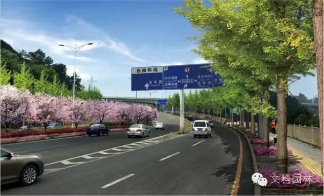 城市道路的植物配置设计原则-007.jpg