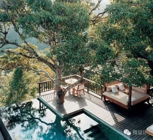 景观做得好丨给树让让路-640.webp (47).jpg