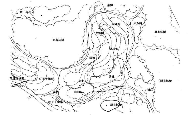 实用 景观植物设计方法(图文解析,值得收藏)_20