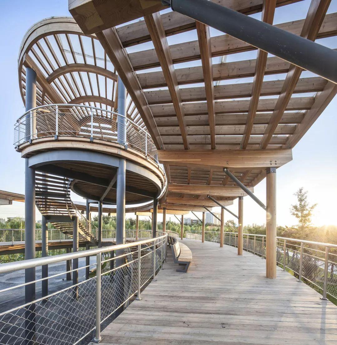 [叙事性空间结构]北京大兴生态文明教育公园/加拿大考斯顿设计_25