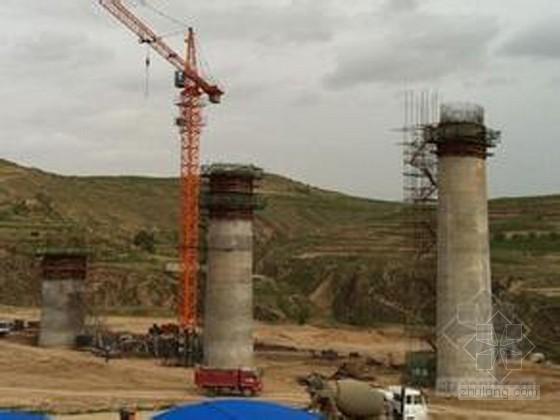 [河南]桥梁工程79m空心薄壁高墩施工技术