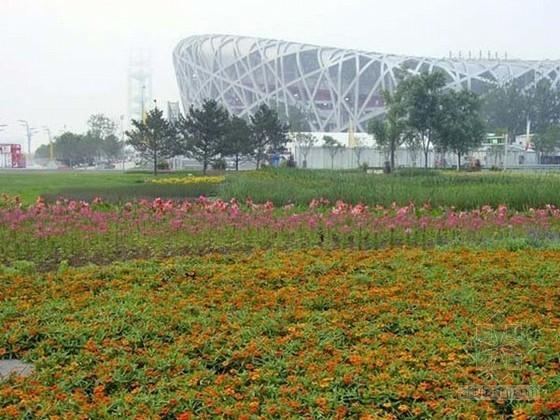 [北京]钢结构大型体育馆环境改造绿化工程监理大纲(鲁班奖工程)