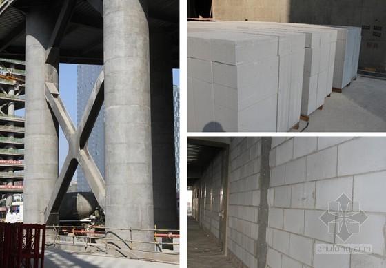 [郑州]双塔超高层综合体项目质量及安全文明管理汇报(附图较多)