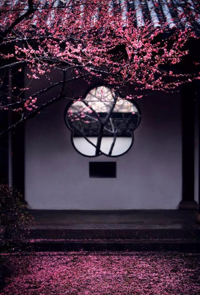 框景·只有中国人才懂的诗情画意_3