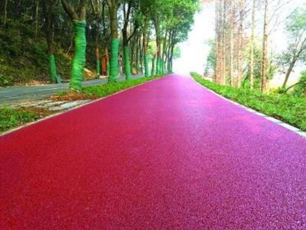 东湖绿道二期5.5公里彩色沥青森林市政道路完工