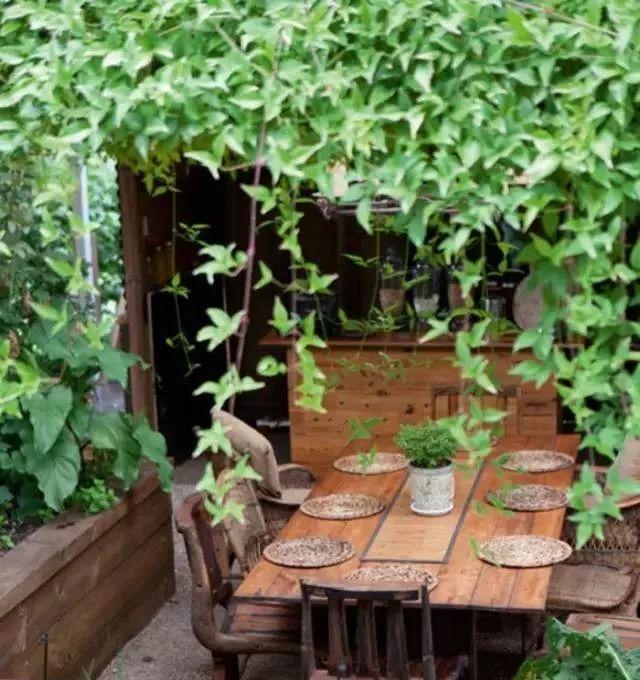 50款乡下小院,花做篱笆,诗意为墙。_37