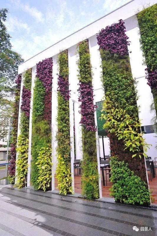 垂直绿化·会呼吸的墙壁_35