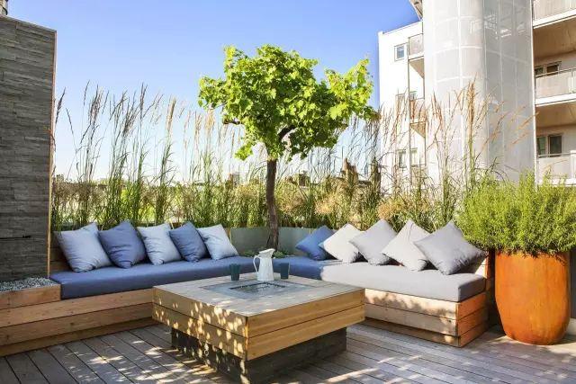 如何用植物装点你的园林景观!_31
