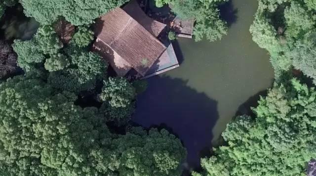 郊区老头老太喝茶嗑瓜子的茅草亭,竟是中国几十年来最伟大的建筑