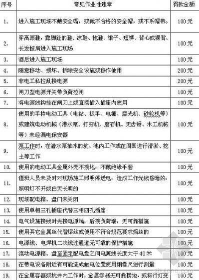 安徽淮南某电厂工程违章作业处罚实施细则