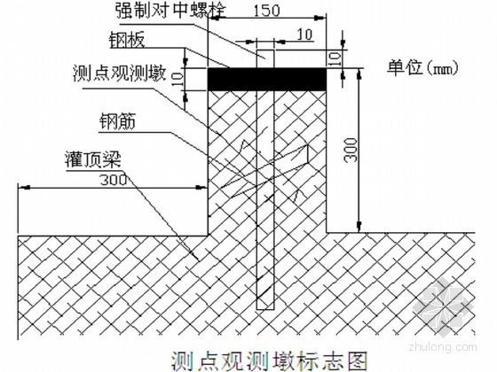 [广东]深基坑开挖支护工程第三方监测施工方案