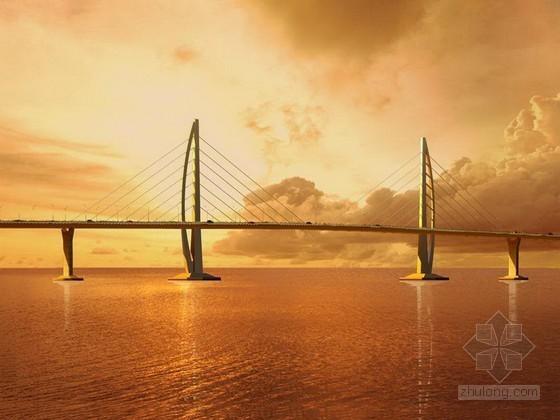 跨海大桥主体工程初步设计方案及重大问题汇报
