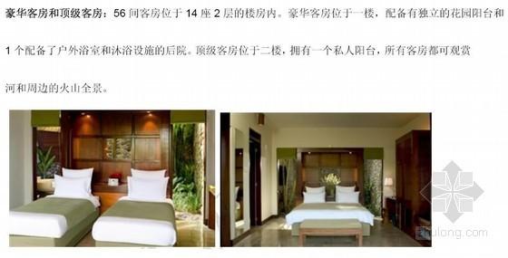 小型精品度假酒店案例分析报告