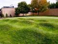 美国绿色波形草坪